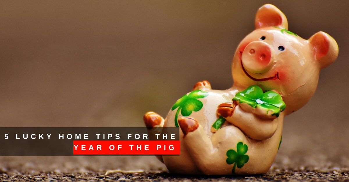 5 Lucky Home Tips for the Year of the Pig