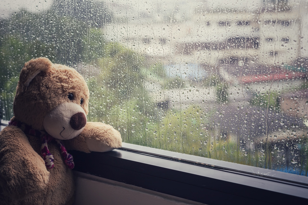A teddy bear looking out of a raining window